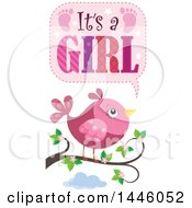 Clipart Of A Pink Bird On A Branch With Gender Reveal Its A Girl Text Royalty Free Vector Illustration by visekart