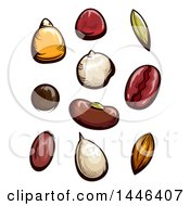 Clipart Of Fruit And Vegetable Seeds Royalty Free Vector Illustration