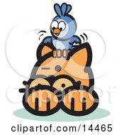 Brave Bluebird Sitting On An Orange Cats Head And Teasing Him Clipart Illustration