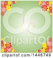 Green Spring Time Flower Background With Faded Blooms On Green