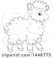 Cartoon Black And White Lineart Cute Baby Lamb Sheep