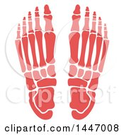 Clipart Of A Human Foot With Visible Bones Royalty Free Vector Illustration by Vector Tradition SM