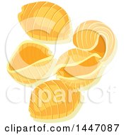 Clipart Of Shell Italian Pasta Royalty Free Vector Illustration by Vector Tradition SM