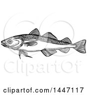 Black And White Sketched Navaga Fish