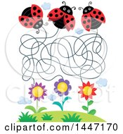 Clipart Of A Maze Of Ladybugs And Flowers Royalty Free Vector Illustration by visekart