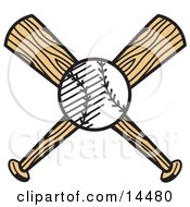 White Baseball Over Two Wooden Baseball Bats Clipart Illustration