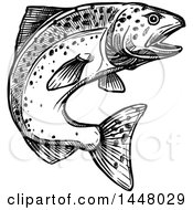 Black And White Sketched Jumping Salmon Fish