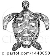 Black And White Sketched Sea Turtle