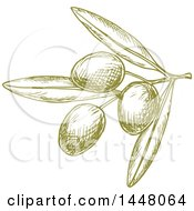 Clipart Of Green Sketched Olives Royalty Free Vector Illustration