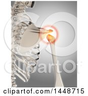 Clipart Of A 3d Human Skeleton With Glowing Shoulder Pain On A Gray Background Royalty Free Illustration