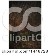 Poster, Art Print Of 3d Female Figure In A Dark Foggy Forest Near A Castle