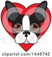 Clipart Of A Cute Boston Terrier Face Over A Love Heart Royalty Free Vector Illustration by Maria Bell