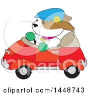 Cute Puppy Dog Driving A Convertible Car