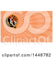 Growling Tiger Head In A Circle With Slash Marks And Orange Rays Background Or Business Card Design