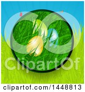 Circle Frame Of Easter Eggs In Grass With Rays And Butterflies