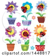 Clipart Of Ladybugs On Potted Flowers Royalty Free Vector Illustration