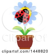 Clipart Of A Ladybug On A Potted Flower Royalty Free Vector Illustration