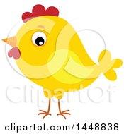 Poster, Art Print Of Yellow Chick