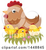 Clipart Of A Brown Hen In A Nest With Chicks Royalty Free Vector Illustration