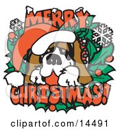 Christmas St Bernard Dog Wearing A Santa Hat Clipart Illustration by Andy Nortnik