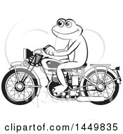 Clipart Graphic Of A Happy Black And White Frog Riding A Red Motorcycle Royalty Free Vector Illustration by Lal Perera