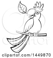 Poster, Art Print Of Black And White Perched Parrot With A Leaf In His Mouth