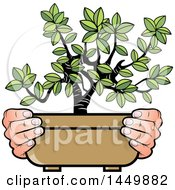 Clipart Graphic Of A Pair Of Hands Holding A Bonsai Plant Royalty Free Vector Illustration