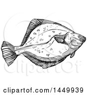 Black And White Sketched Flounder Fish
