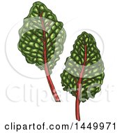 Sketched Swiss Chard Leaves