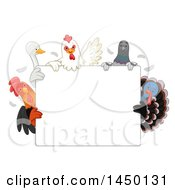 Blank Sign With Chickens A Duck Pigeon And Turkey Bird