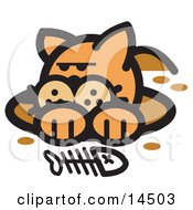 Orange Cat In A Muddy Hole After Digging Out A Fish Bone Clipart Illustration by Andy Nortnik
