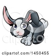 Poster, Art Print Of Cartoon Dutch Bunny Rabbit