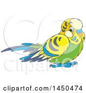 Clipart Graphic Of A Cartoon Cute Pet Budgie Parakeet Bird Royalty Free Vector Illustration