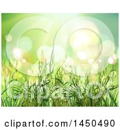 Clipart Graphic Of A Background Of 3d Wheat Strands Over Green With Flares Royalty Free Illustration