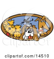 Three Dogs Taking Their Dog Walker For A Walk Clipart Illustration