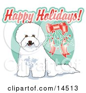 Cute White Bichon Frise Dog Sitting Under Mistletoe Clipart Illustration