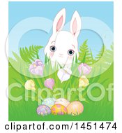Poster, Art Print Of Cute White Easter Bunny Rabbit Behind Grass A Cluster Of Spring Crocus Flowers And Easter Eggs