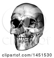 Clipart Graphic Of A Black And White Engraved Human Skull Royalty Free Vector Illustration