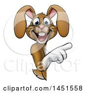 Cartoon Happy Brown Easter Bunny Rabbit Pointing Around A Sign
