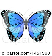 Clipart Graphic Of A Beautiful Blue Butterfly Royalty Free Vector Illustration by AtStockIllustration