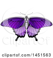 Clipart Graphic Of A Beautiful Purple Butterfly Or Moth Royalty Free Vector Illustration by AtStockIllustration
