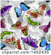 Clipart Of A Background Of Colorful Butterflies Over Grayscale Royalty Free Vector Illustration by AtStockIllustration