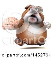 3d Bill Bulldog Mascot Holding A Brain On A White Background