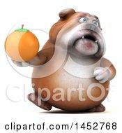 3d Bill Bulldog Mascot Holding A Navel Orange On A White Background