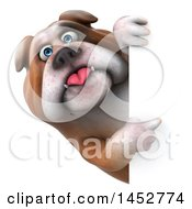 3d Bill Bulldog Mascot Pointing Around A Sign On A White Background