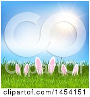 Sunny Sky Over Grass With Easter Bunny Ears