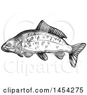 Clipart Graphic Of A Black And White Sketched Carp Fish Royalty Free Vector Illustration