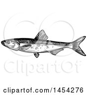 Black And White Sketched Sprat Fish