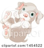 Clipart Graphic Of A Cute Playful Blue Eyed Puppy Dog Rolling On His Back Royalty Free Vector Illustration