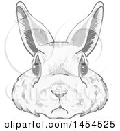 Clipart Graphic Of A Grayscale Bunny Rabbit Face Royalty Free Vector Illustration